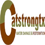 Catstrong Mold Removal Round Rock | Remediation