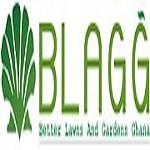 BlagGhana Icon