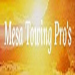 Mesa Towing Pro's Icon