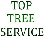 Top Tree Service Icon