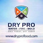 Dry Pro Water Fire Mold Inc Icon