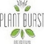 Plantburst Icon