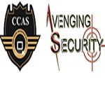 Avenging Security PVT LTD. Icon