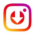 Instagram Story Downloader Icon