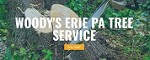 Woody's Erie Pa Tree Service Icon