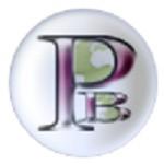 PageBag Icon