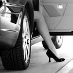 Paramount Limousine Services Ltd. Icon
