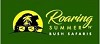 Roaring Summer n Bush Safaris Icon