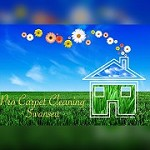 Pro Carpet Cleaning Swansea Icon