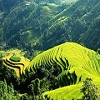 Indochina Wonders Tours Icon