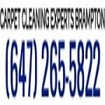 Brampton Carpet Cleaning Experts Icon