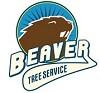 Beaver Tree Services Icon