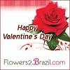flowers2brazil Icon