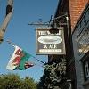 The Whale & Ale Icon