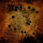 Arguello Termite & Pest Control Icon