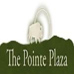 The Pointe Icon