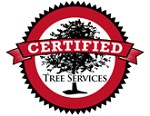 Please Enter YoCertified Tree Removal Servicesur Legal Name. Eg. WidgetSoft, Inc.