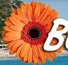 BlumenRiviera Icon