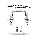 Hall County Karate Icon