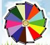 Life Wheel Icon