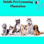 Mobile Pet Grooming Plantation Icon