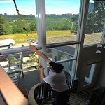 Professional Window Cleaning & Services Icon