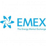 EMEX LLC Icon