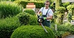 Greater Green Lawn Care Icon