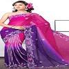 Indian Wedding Saree Icon