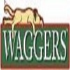 Waggers Icon