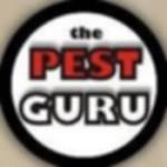 The Pest Guru Icon