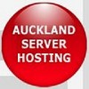 dedicated servers Icon