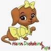 Haven Dachshund Pups Icon