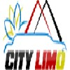City Limousine Ltd. Icon