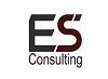 ES Consulting Icon