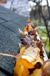 Haddon Township MG Gutter Cleaning