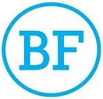 BrizFeel Icon