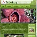 Sutin Group Icon