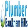 Plumber Baulkham Hills Icon