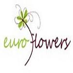 Euro Flowers Icon