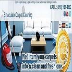 Sun Devil Carpet Cleaning Icon