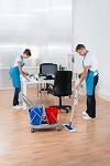 The Master Cleaning Team Icon