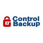 Control Backup Icon