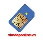 Sim Dep Online Icon