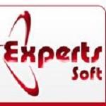 Expertsoft Icon
