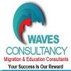 Waves Consultancy Icon