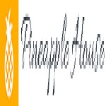 Pineapple House Icon