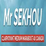 Master SEKHOU Icon