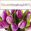 flower2hongkong Icon