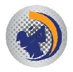 bestgolferzone Icon